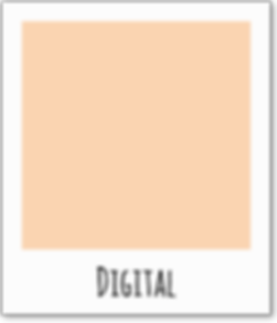 Leistungen_Digital.png