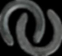 Horseshoe-PNG-Image-Transparent-Backgrou