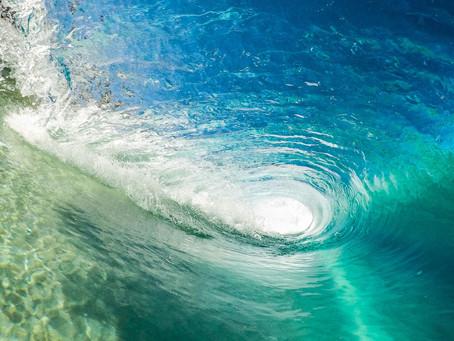 Equiocio pone el foco en las iniciativas empresariales gallegas de surf sostenible