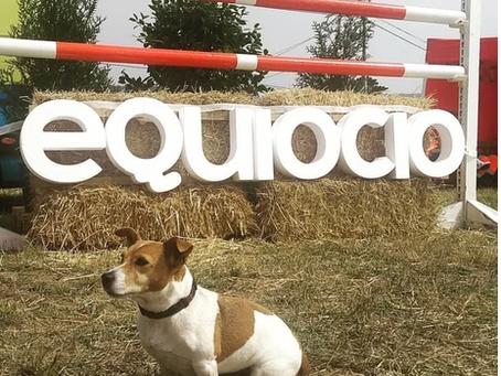 Las mascotas, grandes protagonistas de la primera jornada de Equiocio