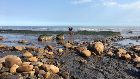 Rock pool fun!