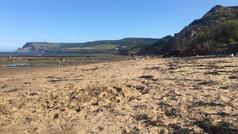 Our beautiful sandy beach!