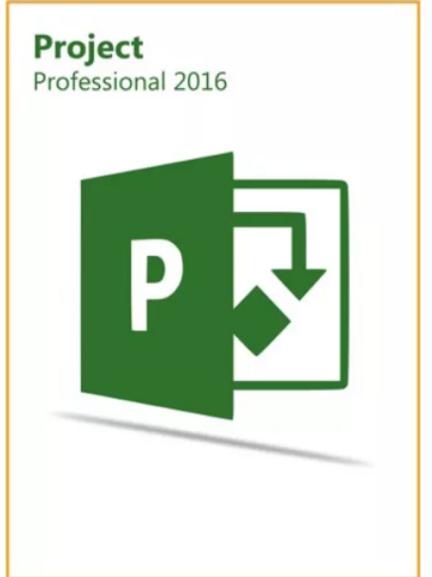 Project Pro Professional 2016 Key Global