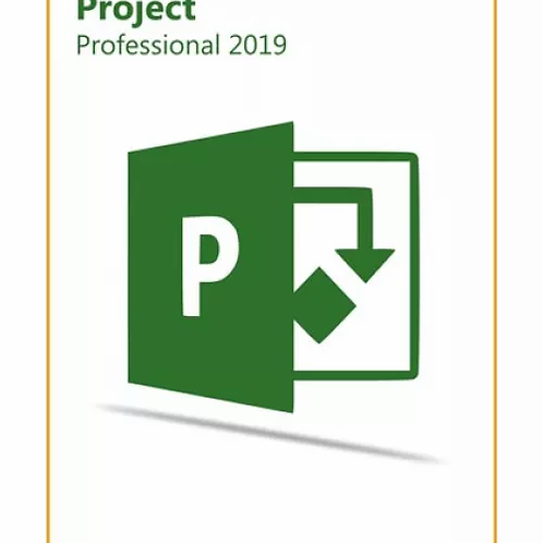 Project Pro Professional 2019 Key Global