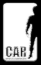 CAR_vit.png