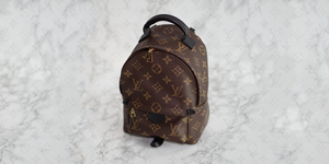 Louis Vuitton palm springs mini backpack review