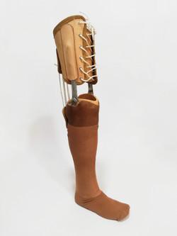 protesis (1)