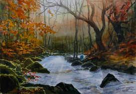 October afternoon, Padley Gorge