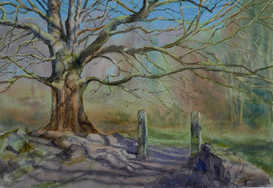 The first nice day of the year, Padley Gorge