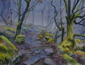 Foggy morning, Padley Gorge