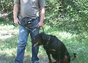 Paolo-Rottweiler.jpg