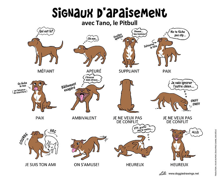 Tano signals-French.jpg