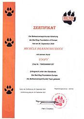 Certification Whoopi.jpg