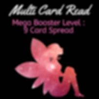 Mega Booster Level Multi Card Read