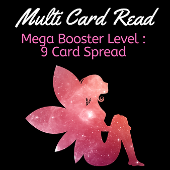 Mega Booster Level Multi Card Read