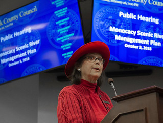 Property rights supporters, environmental protection camps address council about 2018 River Plan