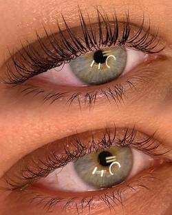 eyelaslash lift & tint