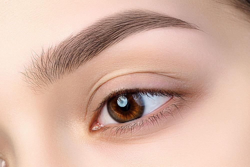 Eyebrow Microshading