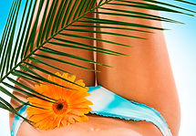 Brazilian Wax Safe All Natural Painless Bare Bikini Del Mar Expert Clean Fast Nufree
