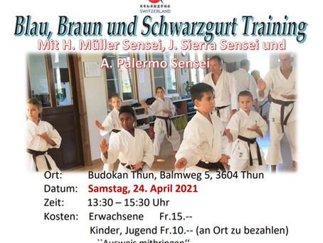 Blau, Braun & Schwarzgurt Training Nr. 1 2021