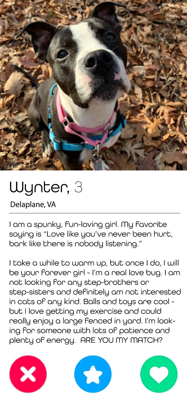 WynterTinder1