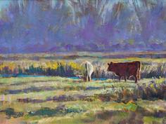 Cattle, September Mist