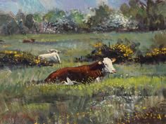Cattle at rest, Halvergate