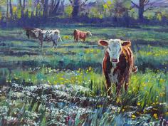 Pasture & Cattle, June