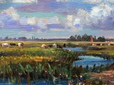 Cattle on Haddiscoe marshes