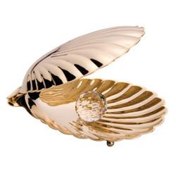 Раковина Золотой павлин.jpg