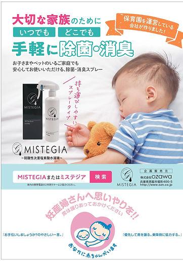 MISTEGIA広告データ (2).jpg