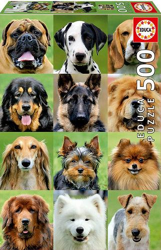 Rompecabezas 500 piezas Collage de perros