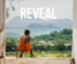 REVEAL 10.28.35 AM.png