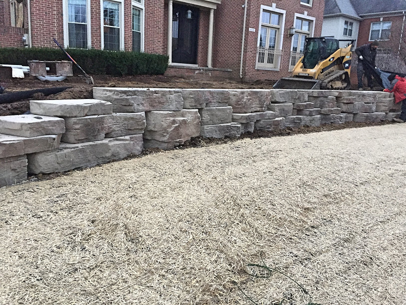 retaining wall - seed