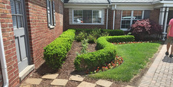 shrubs - stone walkway - annual color