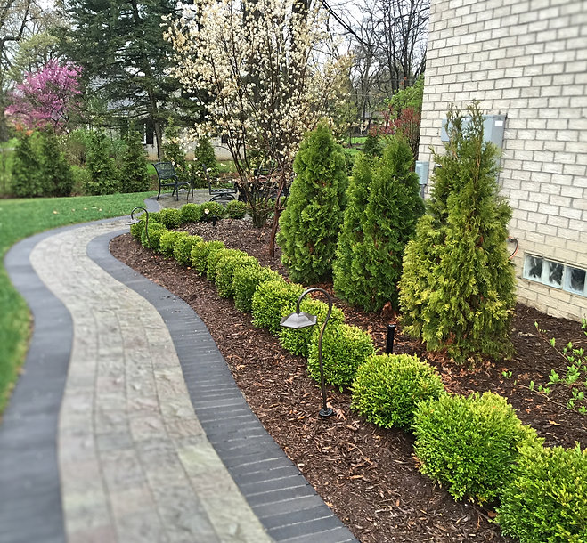 trees - shrubs - mulch - brick walkway