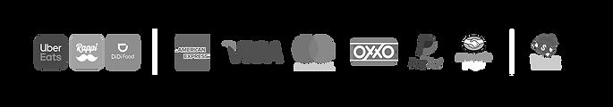 Logos Pagos Pagina Web.png