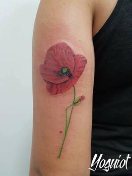 tatouage couleur, tatouage fleur, tatouage bras, yoguiot
