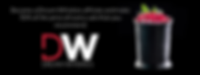 DW affiliate banner.png