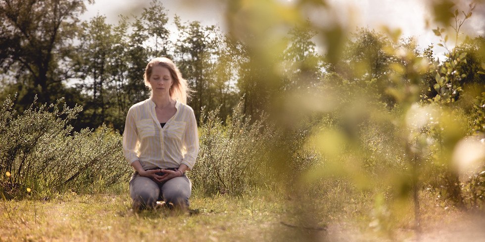 The Power of Allowing Help - Embodied Meditation