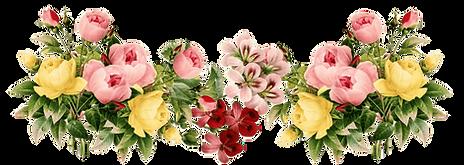 flowers-png-transparent.png
