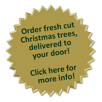 Gold Seal Image - fresh cut trees.png