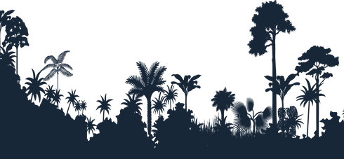 jungle-transparent-silhouette.png
