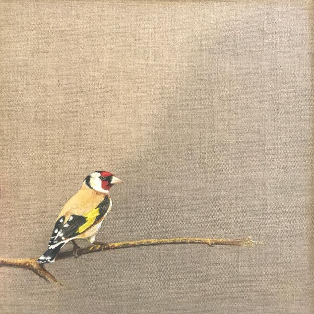 Goldfinch on Linen 206230 copy.jpg