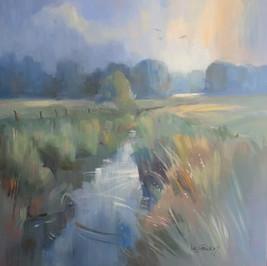 Woking Wetlands Evening