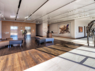 America's Artiest New Hotels