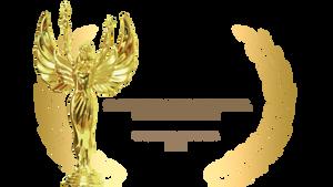 El largometraje Comunidades Creativas fue seleccionado en el 12 Months Film Festival en Rumania
