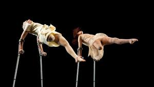 Danza con capacidades diversas