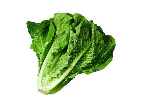 Cos Lettuce -per pc