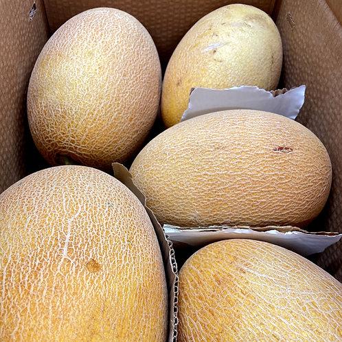 Melon CY Ananas - per kg
